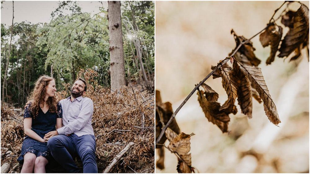 feuilles mortes - roux - arbres - foret - nature - automne - photographe - orne - mariage - eure et loir - perche